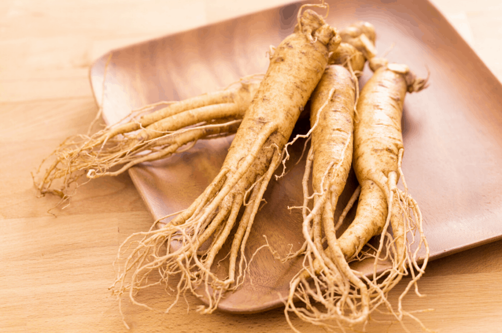 Energetic Lifestyle – Best Ginseng Supplement