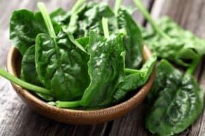 Chlorophyll-Rich Foods